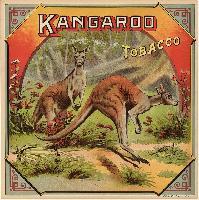 Kangaroo Tobacco